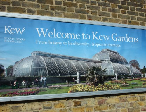 Kew Botanic Gardens by bike