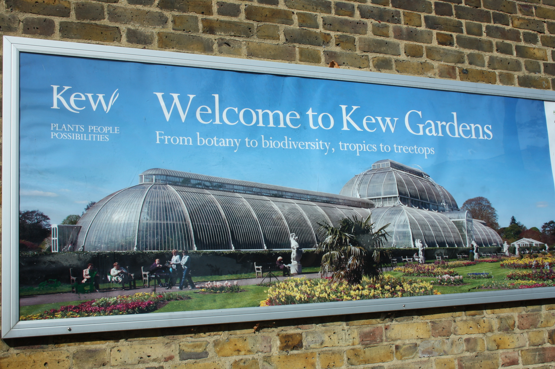 Visit World Famous Kew Botanical Gardens on  a half day bike tour!
